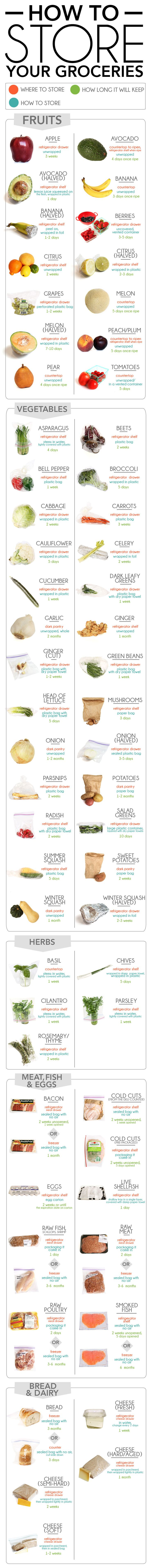 Guide to Storing Food